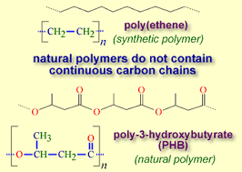 Natural vs Synthetic Polymers