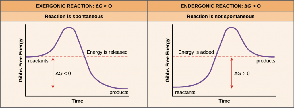 Free energy of reaction - Engineering Chemistry