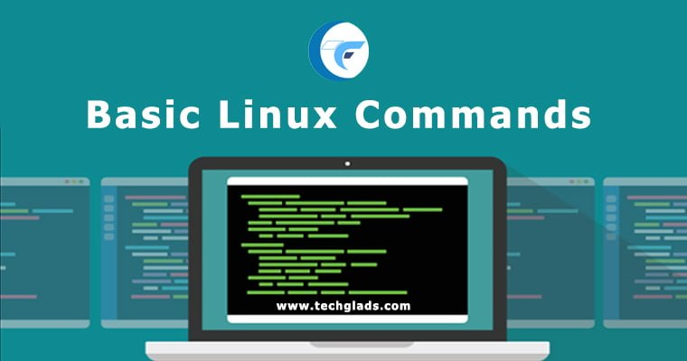 70 Basic Linux Commands for Beginners With Examples and Syntax